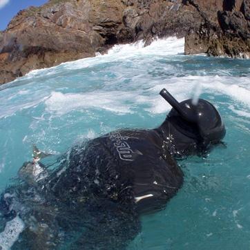 pesca submarina a la espuma